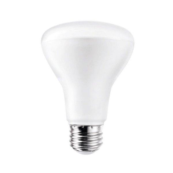 R20 Flood Light flood lamp