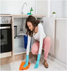 House Cleaning Services Edison