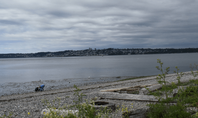 View of White Rock, BC, from Semiahmoo Resort