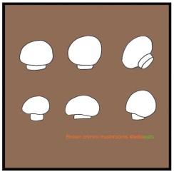 Recipe Best Mushroom ever. Recipe and CRIMINI MUSHROOMS illustration by EDIE EATS by Edith Dourleijn