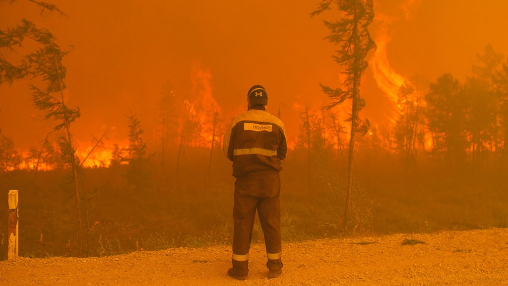 Fires in Siberia, courtesy of the Moscow Times.