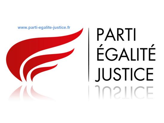 """Le PCF accuse le PEJ d'être une """"officine officieuse de l'AKP"""", le parti d'Erdogan"""