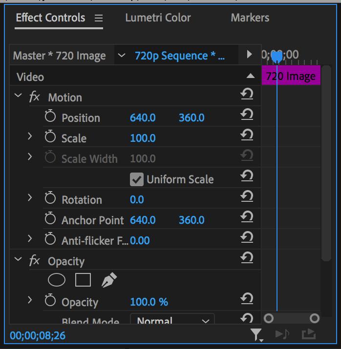 Effect Controls Panel in Premiere Pro