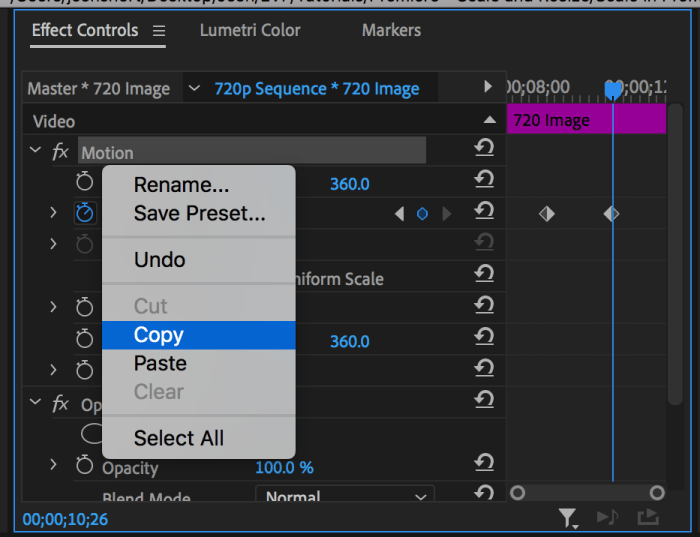 Copying Motion from Effect Controls to paste scale property onto other clips in Premiere Pro