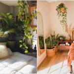φυτά κρεβατοκάμαρα