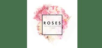#DailyDose | Roses