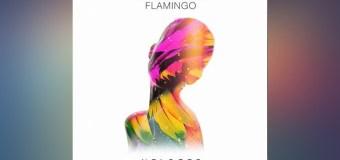 #Release | Oliver Heldens – Flamingo