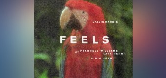 Calvin Harris – Feels
