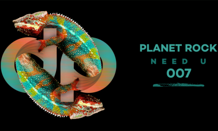 Discovery Project Releases || Planet Rock – Need U