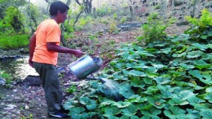 #ForSuchATime | Alleviating Hunger in Nicaragua