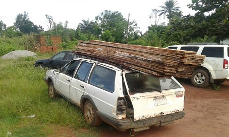 Edo govt orders arrest of two illegal wood loggers, goes after syndicate