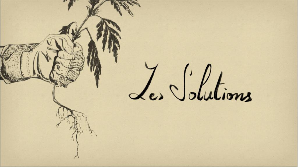 Ambroisie — Les solutions