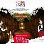 Les Bons Plans de la Foire aux Vins Carrefour