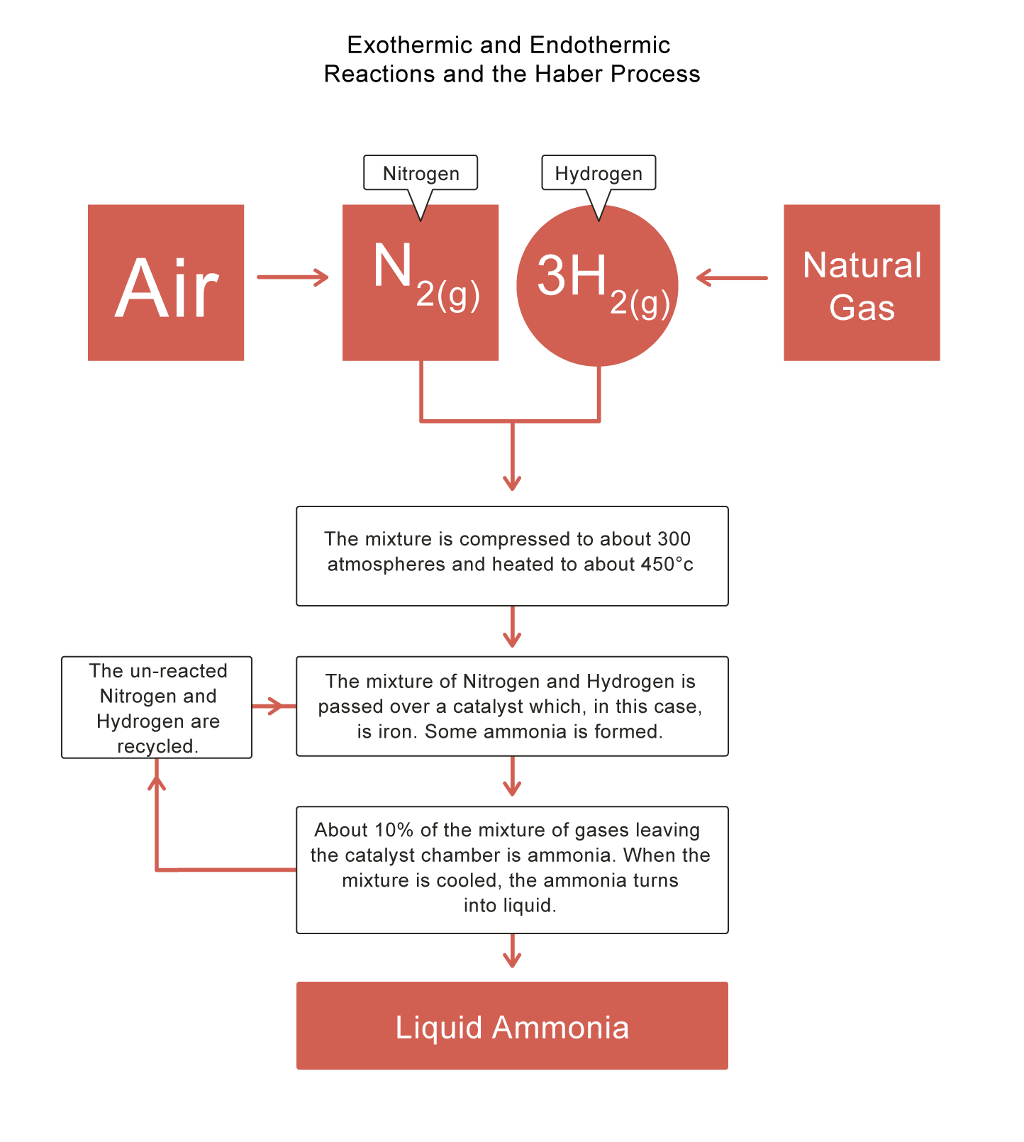 Exothermic And Endothermic Reactions And The Haber Process Worksheet