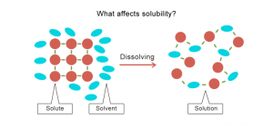 What Affects Solubility? Worksheet  EdPlace