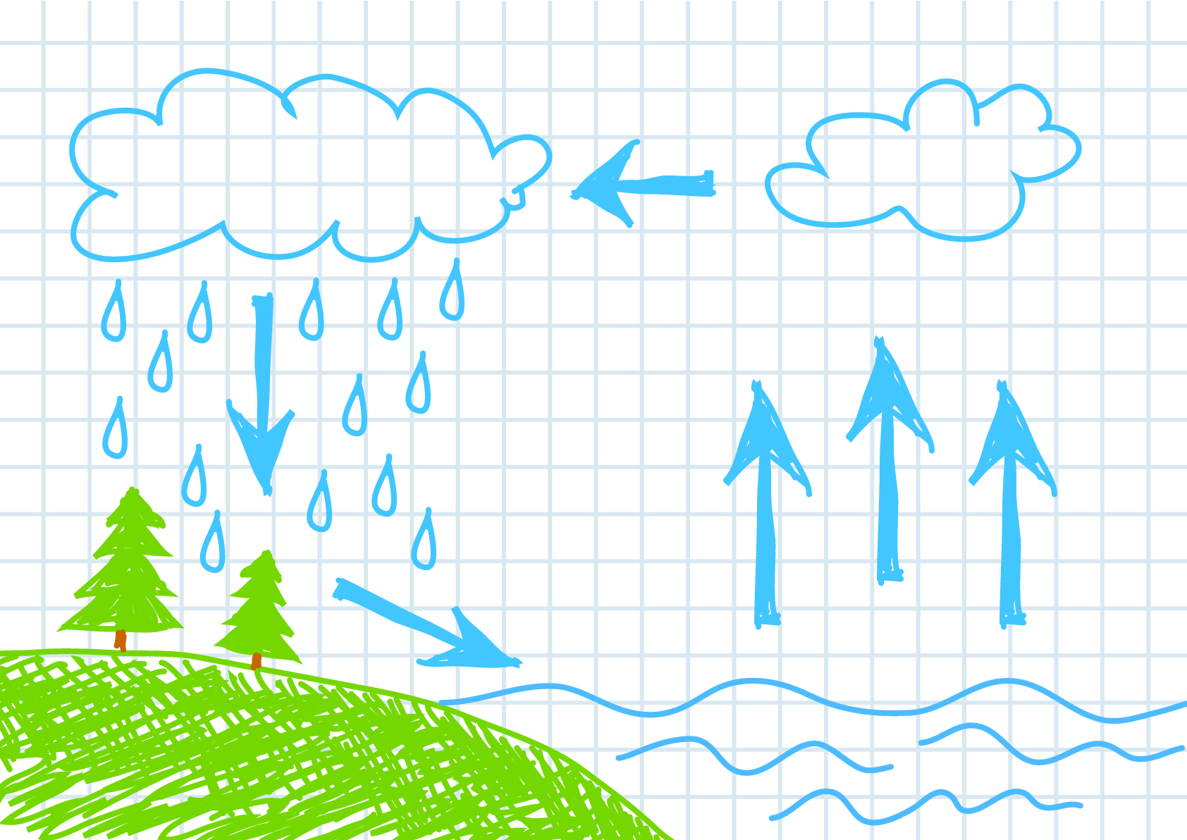 The Water Cycle 1
