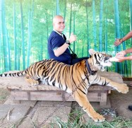 photo with tiger