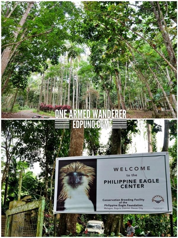 Philippine Eagle center philippines