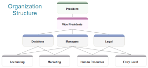 Organizational Structure Diagram Software
