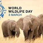 World Wildlife Day, 2017