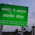India's first cow sanctuary opened in MP's Malwa