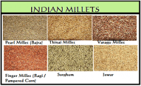 The year 2018 as International Year of Millets