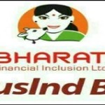 Bharat financial inclusion merger