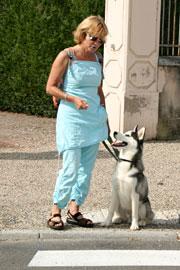 Education canine à domicile - Dressage