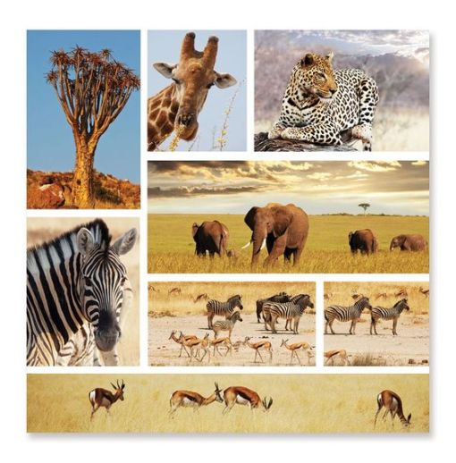 Safari Shapshots Cardboard Jigsaw