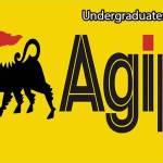 Nigerian Agip Oil Company (NAOC) Undergraduate Scholarship