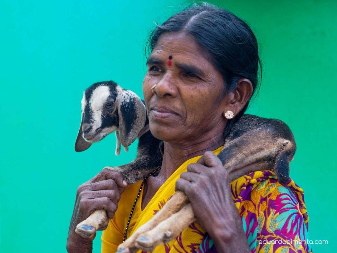 India-015_resultado
