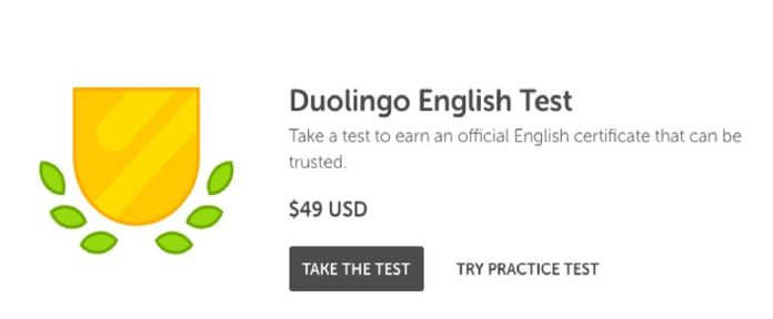 Duolingo English Take a look at – Is it different of IELTS?