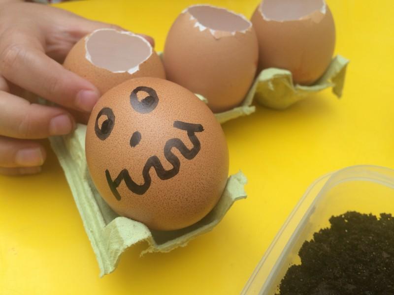 huevos-con-semillas-caras