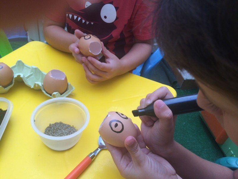 huevos-con-semillas-niños-dibujando