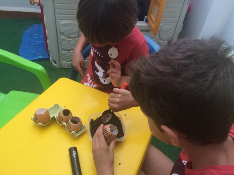 huevos-con-semillas-poner-sustrato-niños-2