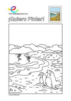 colorear_focas-y-playa
