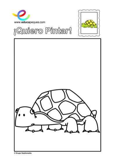 colorear_tortuga