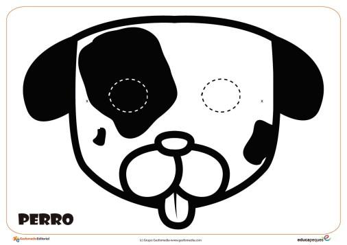Perro-01