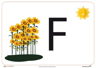F primavera