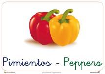 verduras y hortalizas 8