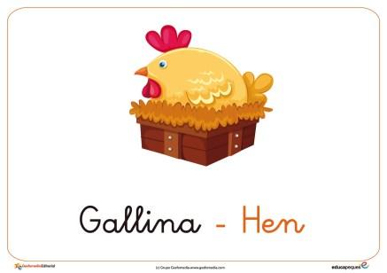 gallina ficha ave