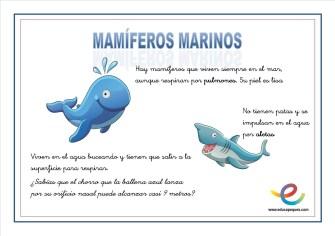 03 Mamiferos marinos