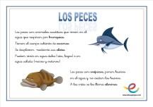 07 Peces