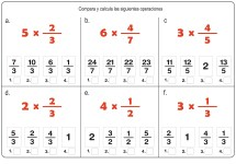 fracciones 13