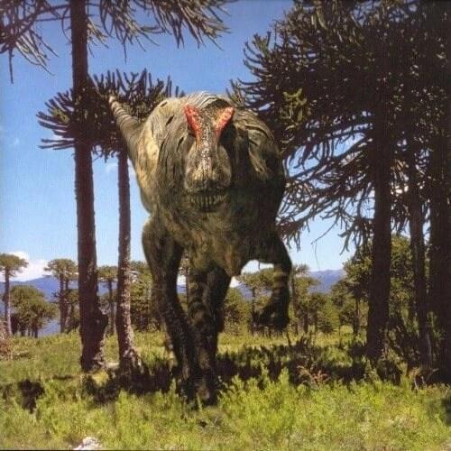 dinosaurios 13