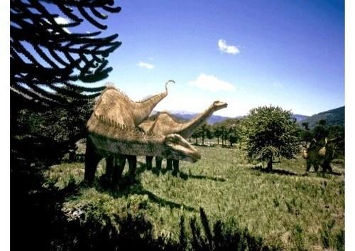 dinosaurios 23