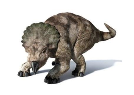 Un paseo entre dinosaurios: Periodo Cretácico Segunda parte