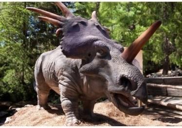 imagenes dinosaurios parte 2_037