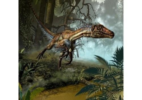 imagenes dinosaurios parte 2_044