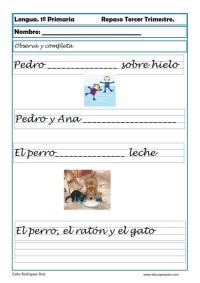 lengua primaria 12